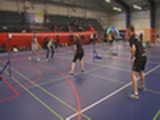 Badmintonová liga
