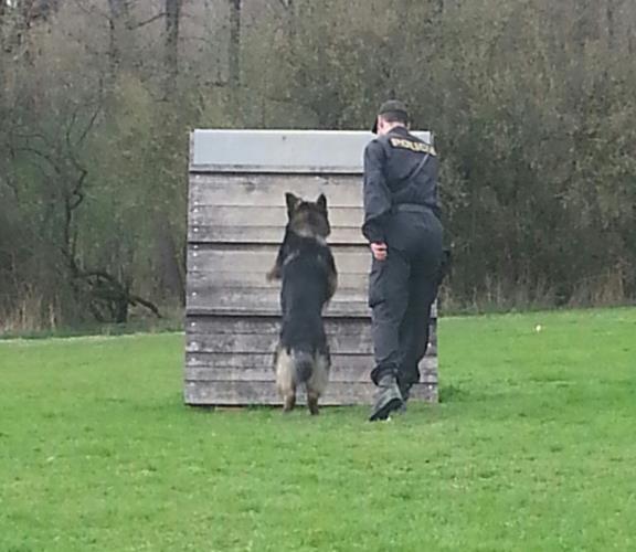 Policejní pes Sabaz zadržel pachatele vloupání do prodejny