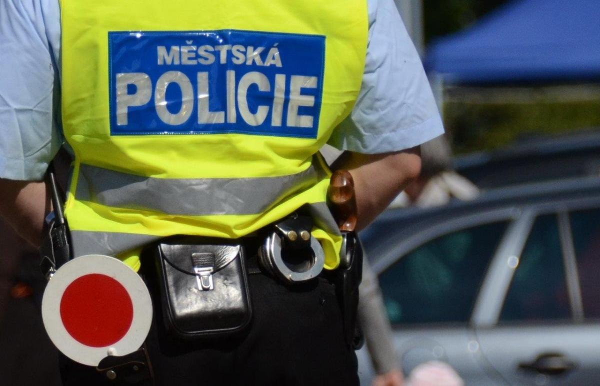 Zpráva o činnosti Městské policie Bohumín v roce 2013