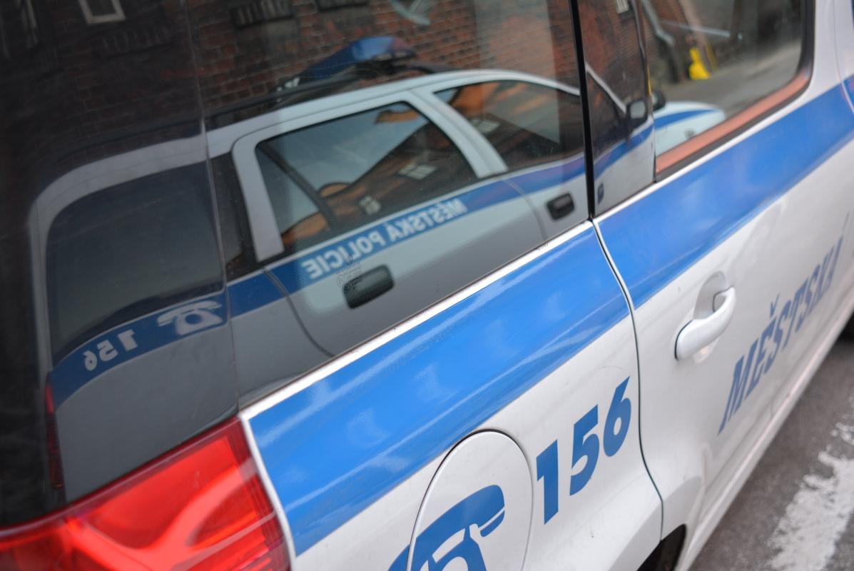 Strážníci zadrželi duo, které kradlo jako straka