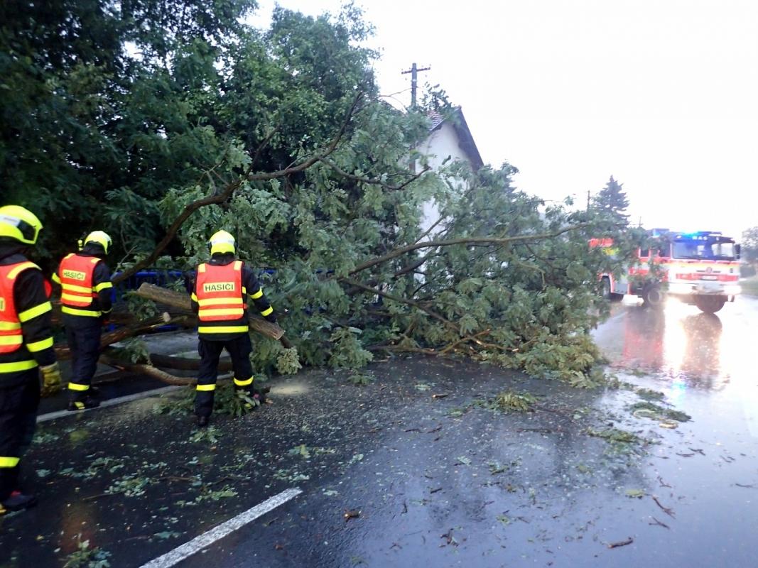 Silný vítr zaměstnal hasiče, v kraji vyjeli k více než sedmdesáti zásahům