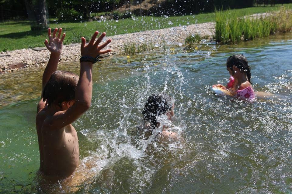 Kvalita vody v Kališově jezeře dál ideální, Vrbické jezero má zónu s otazníkem