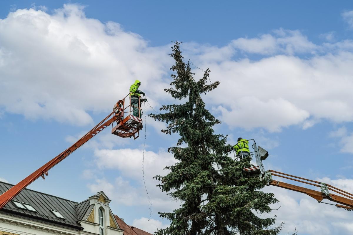 Vánoční jarmark letos v Bohumíně nebude, stromy se rozsvítí v tichosti a bez ohňostroje