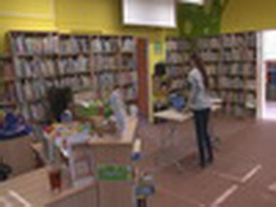 Knihovna uzavřena, spustila proto revizi fondu